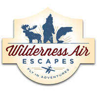 Wilderness Air logo